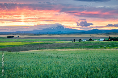 Fototapeta  Western USA Countryside Sunset: Rolling fields and expansive farmland with a sno