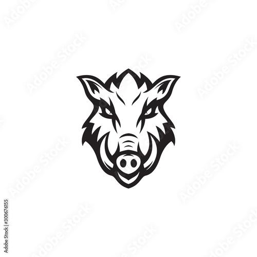 Fototapeta vector illustration wild boar animal design
