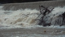 Static View Of Raging Dirty River Flooding Over A Dam With Washed Up Tree
