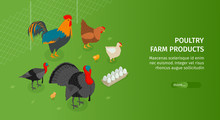 Poultry Farm Products Banner