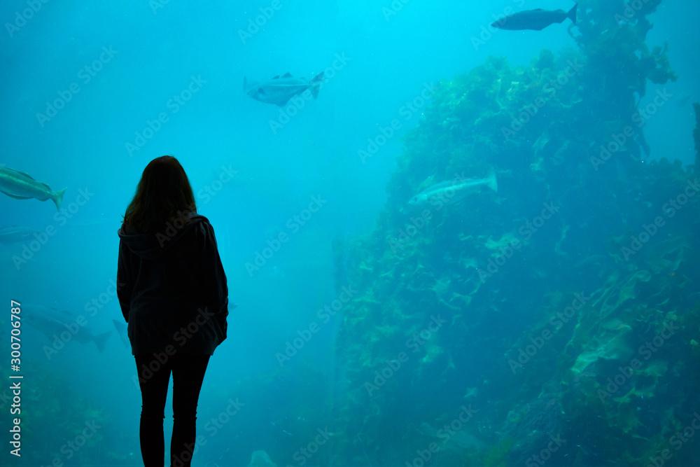 Fototapety, obrazy: Girl looking at fish underwater in aquarium. Marine, fish, zoo, tank, underwater concept.