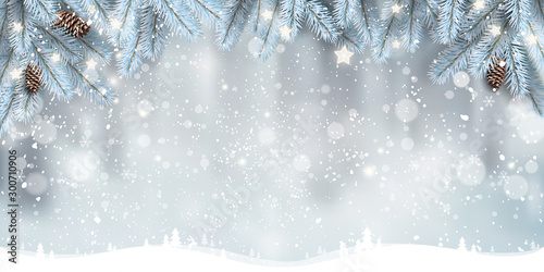 Obraz Winter Christmas background with landscape, snowflakes, light, stars. Xmas and New Year card. Vector Illustration - fototapety do salonu