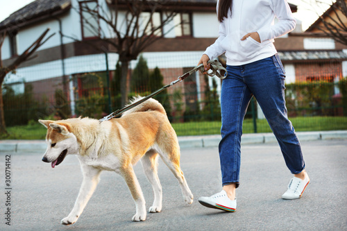 Young woman walking her adorable Akita Inu dog outdoors Canvas Print