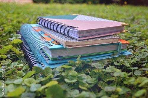 Pila de libros en el jardín Fototapet