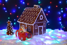 The Hand-made Eatable Gingerbread House, Marshmallow Snowman  In Mag,  New Year Tree, Snow Decoration, Garland Snow And Background Illumination