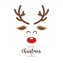 Reindeer Red Nosed Cute Close Up Face With Greetings Isolated White Background. Christmas Card