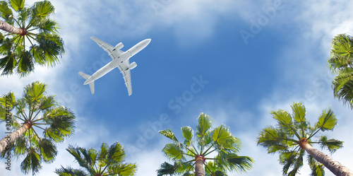 Avion à Moteur Passenger airplane flying above the tropical palm trees. Bottom view of the aircraft.