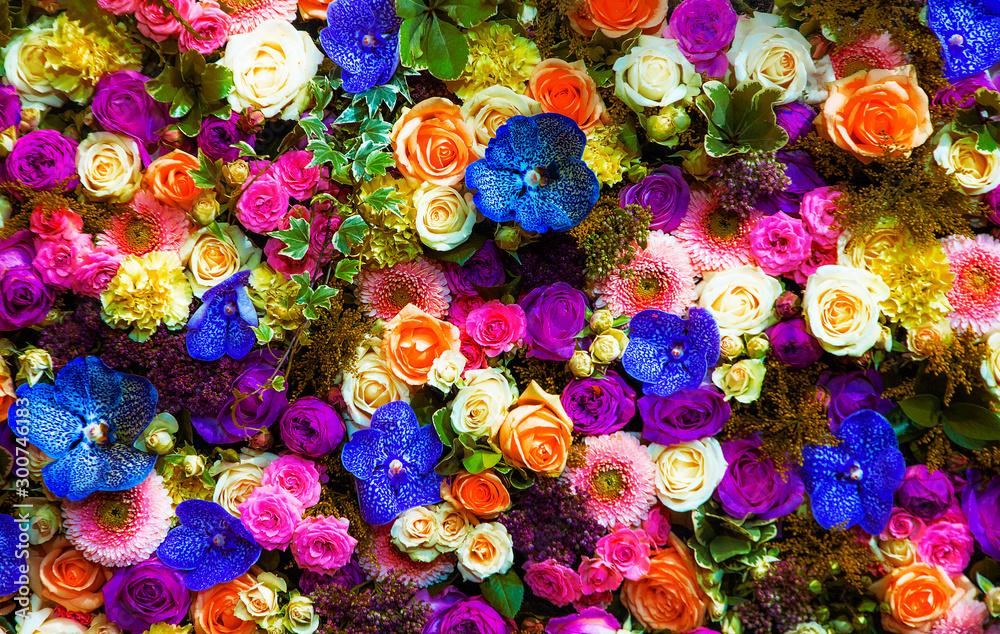 Fototapeta fondo natural de flores de colores