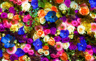 fondo natural de flores de colores