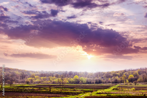 Spring landscape with forest in the distance and beautiful sky during sunset_