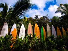 Row Of Surfboards Stacked As A Fence In Maui, Hawaii