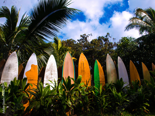 Obraz na plátně row of surfboards stacked as a fence in Maui, Hawaii