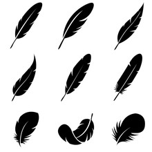 Feather Set Icon, Logo Isolate...