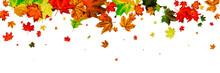 Leaves Background. Autumn Seas...