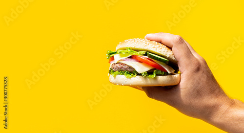 Fotomural  hand holding a burger