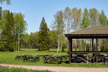 Summer Cafe In The Park Meadow