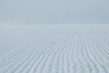 Grain Field Snow Covered. Agri...