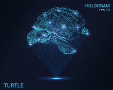 Hologram Turtle. The Rays Of L...