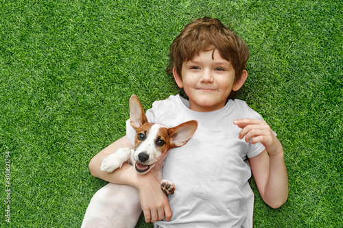 Fototapeta Child embracing puppy jack russell and lying on green carpet.
