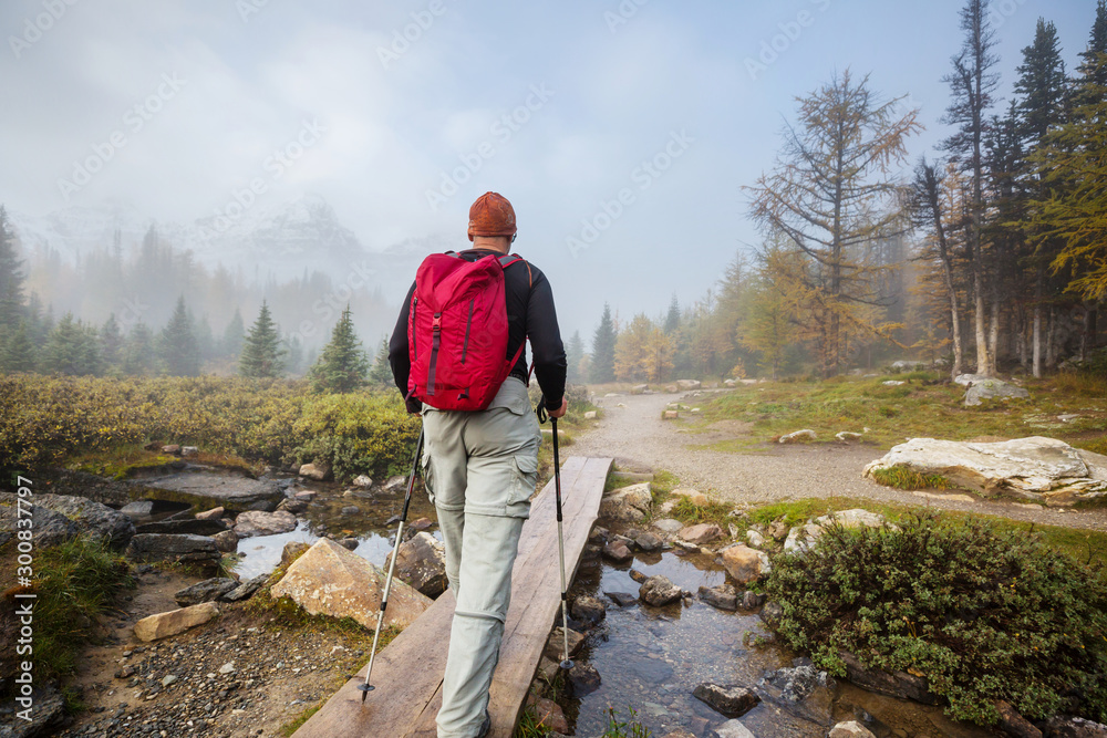 Fototapety, obrazy: Hike in autumn Canada