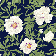 FototapetaPeony flower. Seamless pattern, background. Colored vector illustration. In botanical style on space blue background..