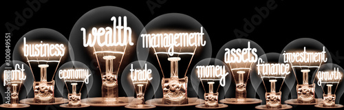 Fotomural Light Bulbs with Wealth Management Concept