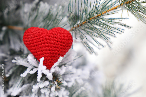 Fotobehang Bomen Christmas heart, red knitted symbol of love in the snow on fir branches. Background for romantic card, New Year celebration, Valentine's day or winter weather
