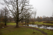 Autumn Panorama Of The Pond In...
