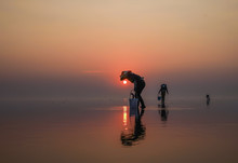 Fishermen Catch Fish At Dawn I...
