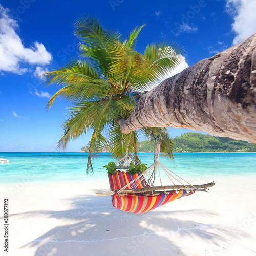 Deurstickers Tropical strand ハンモッグと青い空とヤシ
