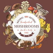 Background With Round Label And Type Design Over Hand Drawn Edible Mushrooms