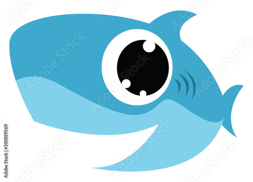 Baby shark, illustration, vector on white background. Tableau sur Toile
