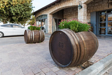 Wine Barrels With Flowers Growing In Them Near The Entrance To The Psagot Winery In Samaria Region In Benjamin District, Israel