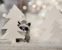Cute Christmas Racoon Hiding Behind Paper Tree