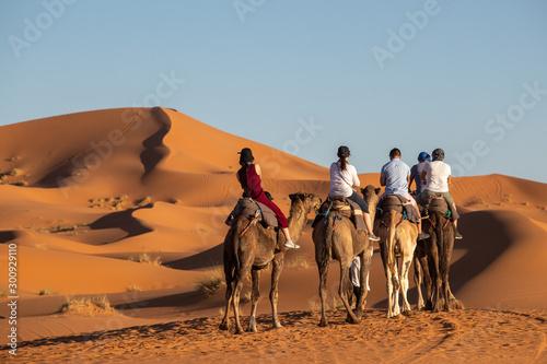 Spoed Fotobehang Kameel European tourists in Sahara Desert during sunset, Merzouga, Morocco