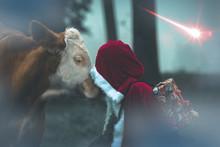 Weihnachtsmann Mit Ochse Vor W...