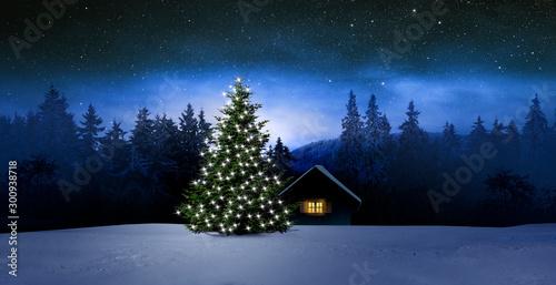 Obraz Gemütliche Holzhütte mit Weihachtsbaumin Wnterwald bei Nacht im Winter - fototapety do salonu