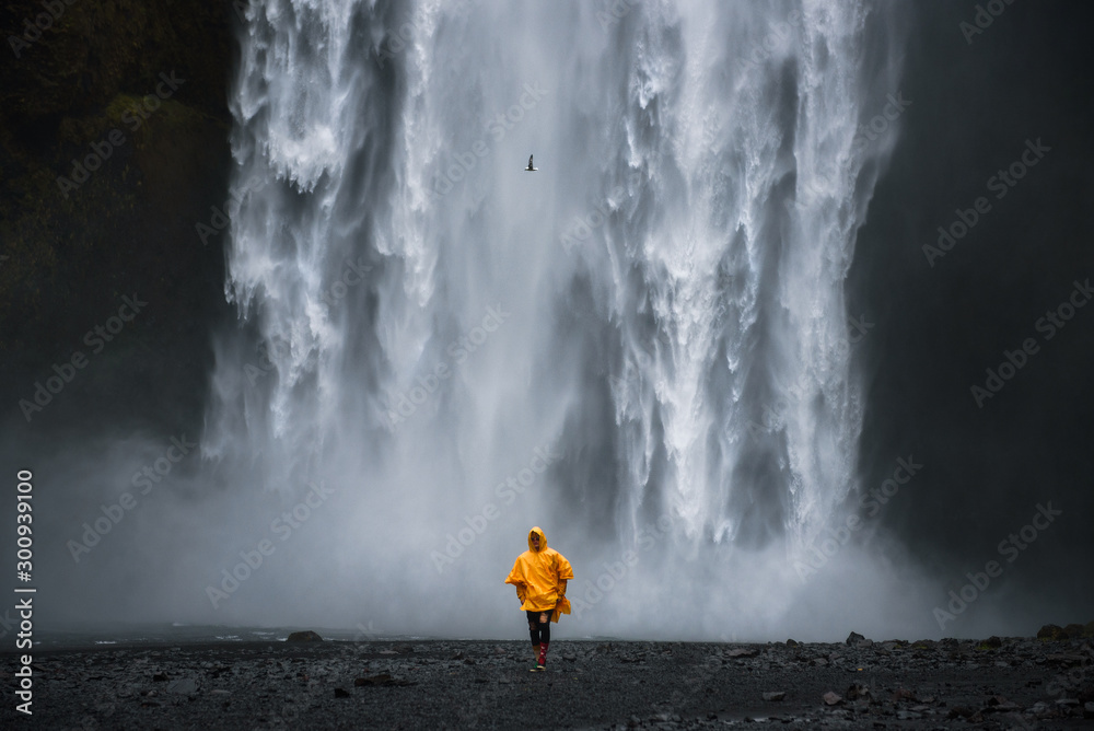 Fototapety, obrazy: Tourist wearing a yellow raincoat walks from the Skogafoss waterfall in Iceland