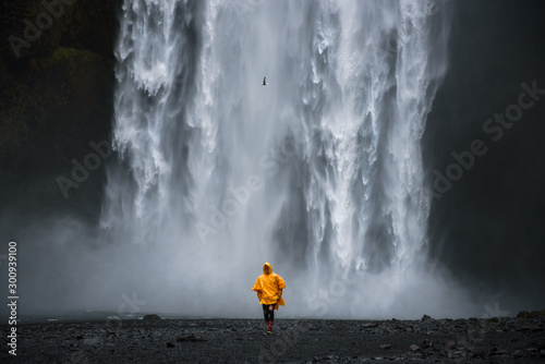 Tourist wearing a yellow raincoat walks from the Skogafoss waterfall in Iceland - 300939100