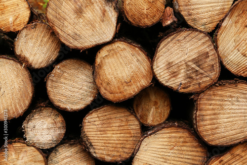 Foto op Plexiglas Brandhout textuur Close up wooden stacked sawn logs for background or abstraction