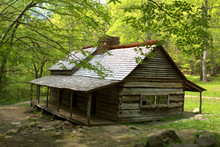 "Noah ""Bud"" Ogle Cabin Near Cherokee Orchard In The Sugarlands Surrounded By Early Fall Colors"