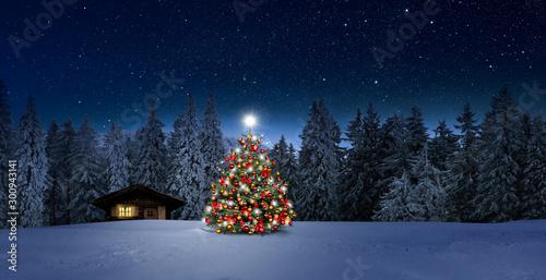 Gemütliche Holzhütte mit Weihachtsbaumin Wnterwald bei Nacht im Winter