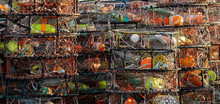 A Stack Of Crab Traps Loaded With Colorful Buoys And Line Sit Waiting For The Beginning Of Crab Season
