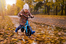 Child With Balance Bike Riding Through Puddle Full With Autumn Leaves