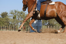 Horse Barrel Racing Concept Close Up For Western Sport.