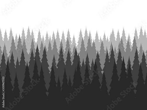 Montage in der Fensternische Grau Verkehrs Pine forest in winter. Nature landscape vector background.