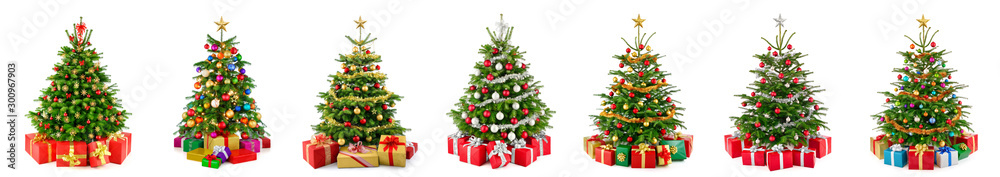 Fototapety, obrazy: Set of 7 different gorgeous natural Christmas trees with ornaments and gift boxes, studio isolated on white background