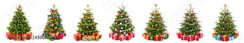 Foto Set of 7 different gorgeous natural Christmas trees with ornaments and gift boxe