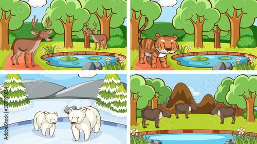 Tuinposter Kids Background scenes of animals in the wild