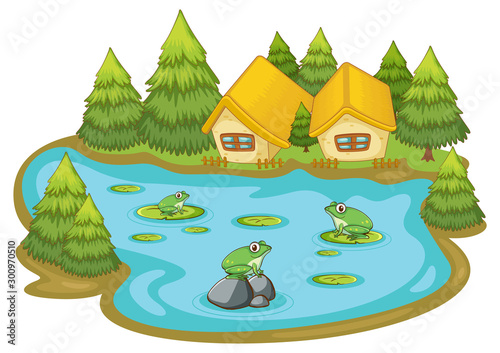 Photo sur Toile Jeunes enfants Frogs in the pond on white background